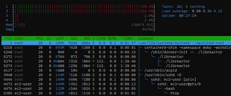 htop screenshot showing only 2 vCPUs at 100%